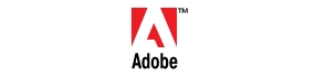 The Sponsor of the Category: Adobe.